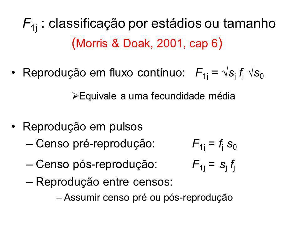 F 1j : classificação por estádios ou tamanho ( Morris & Doak, 2001, cap 6 ) Reprodução em fluxo contínuo: F 1j = s j f j s 0 Equivale a uma fecundidad