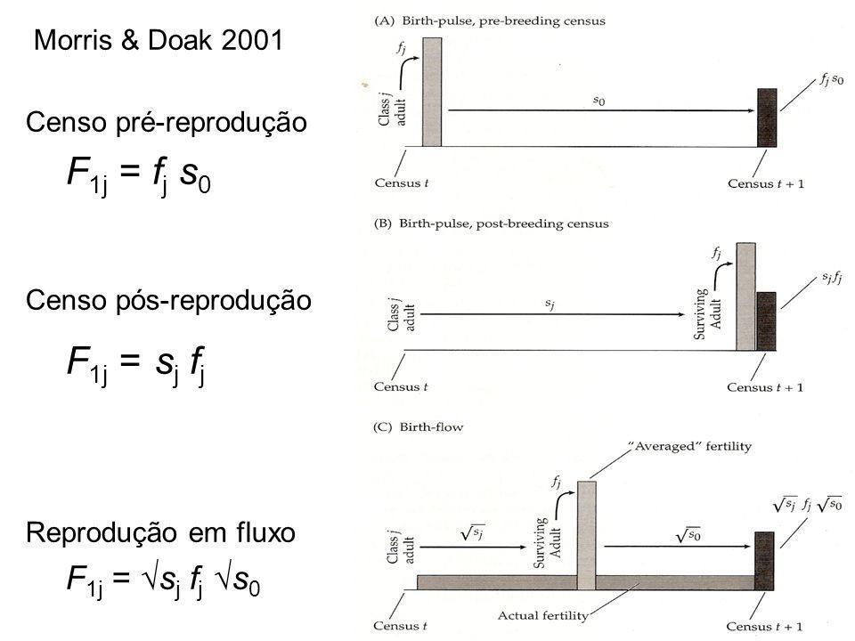 Morris & Doak 2001 Censo pré-reprodução F 1j = f j s 0 Censo pós-reprodução F 1j = s j f j Reprodução em fluxo F 1j = s j f j s 0