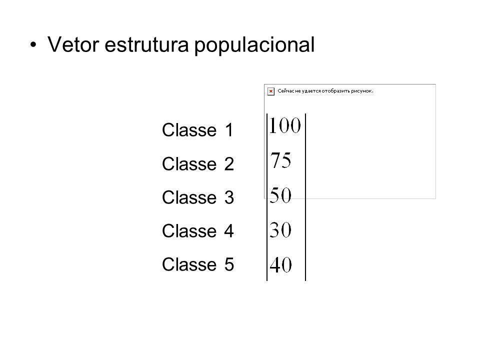 Vetor estrutura populacional Classe 1 Classe 2 Classe 3 Classe 4 Classe 5