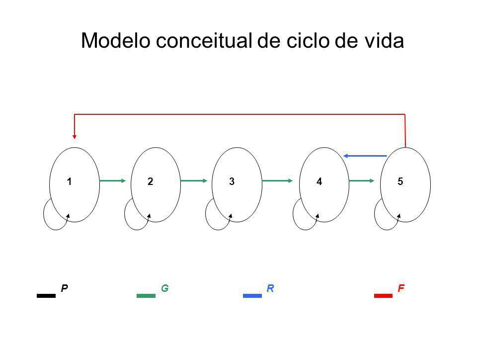 Modelo conceitual de ciclo de vida 12345 PGRF