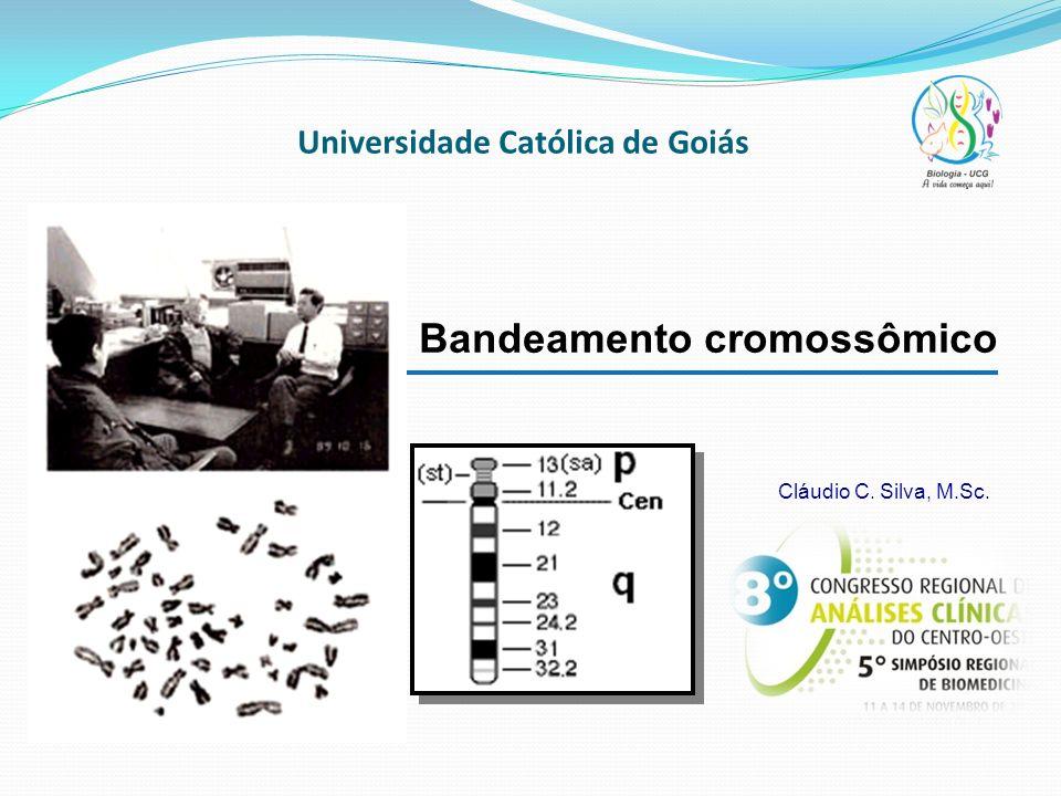 Universidade Católica de Goiás Bandeamento cromossômico Cláudio C. Silva, M.Sc.
