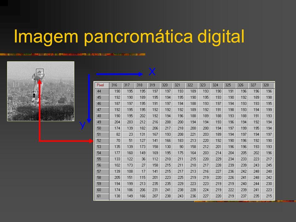 Imagem pancromática digital X Y