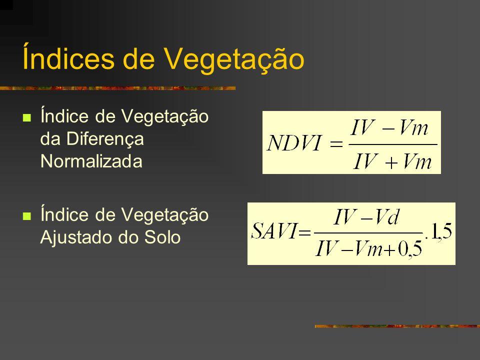 Índices de Vegetação Índice de Vegetação da Diferença Normalizada Índice de Vegetação Ajustado do Solo