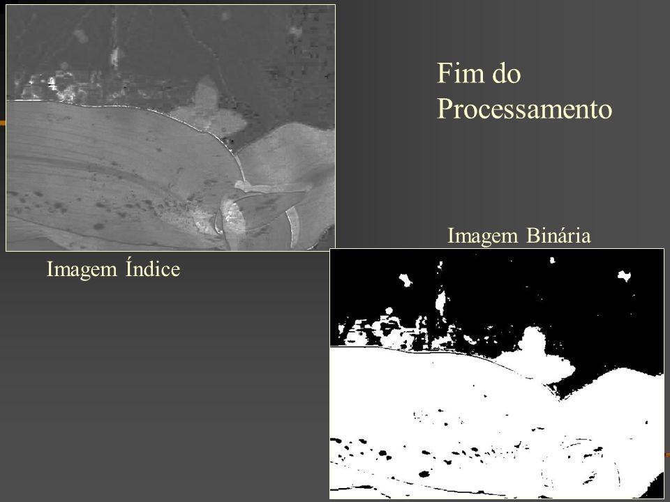 Imagem Índice Imagem Binária Fim do Processamento