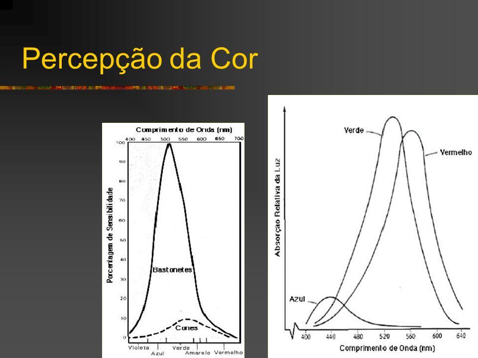 Exemplo de Análise Imagem Original Presença de Lagarta