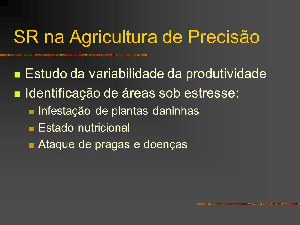 SR na Agricultura de Precisão Estudo da variabilidade da produtividade Identificação de áreas sob estresse: Infestação de plantas daninhas Estado nutr