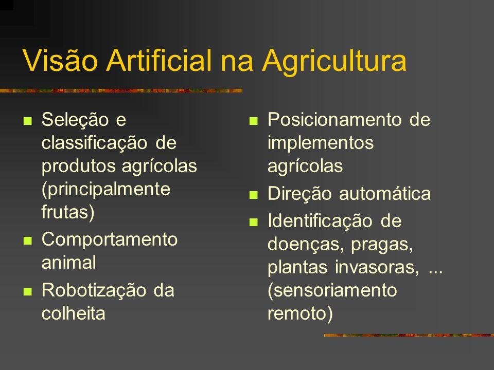 Visão Artificial na Agricultura Seleção e classificação de produtos agrícolas (principalmente frutas) Comportamento animal Robotização da colheita Pos