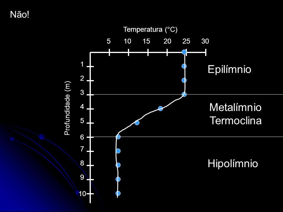Não! 510152025 30 1 2 3 4 5 6 7 8 9 10 Temperatura (°C) Profundidade (m) Epilímnio Hipolímnio Metalímnio Termoclina