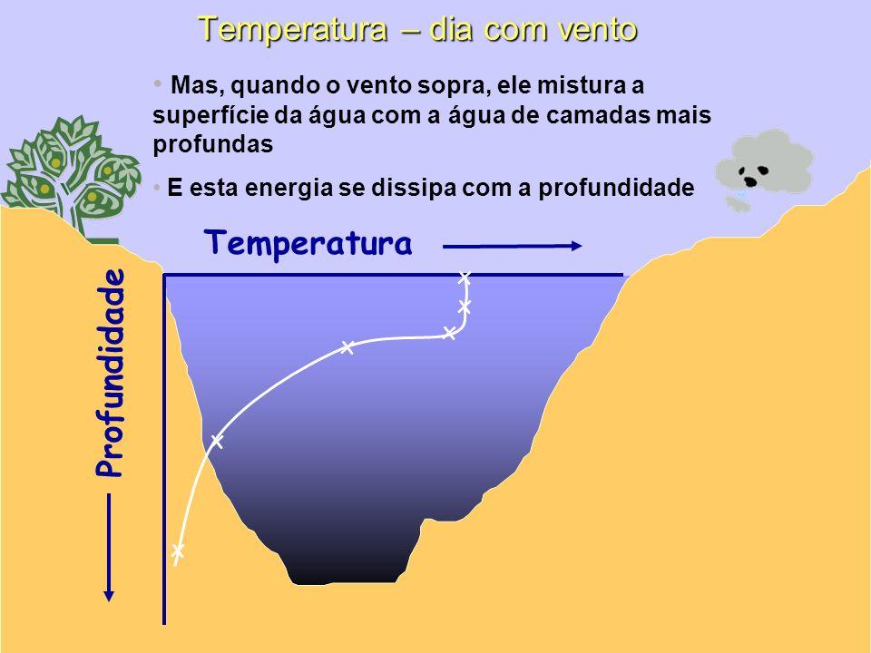 Profundidade Temperatura x x x x Mas, quando o vento sopra, ele mistura a superfície da água com a água de camadas mais profundas E esta energia se di