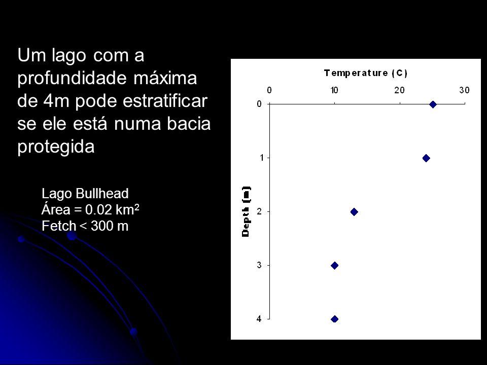 Um lago com a profundidade máxima de 4m pode estratificar se ele está numa bacia protegida Lago Bullhead Área = 0.02 km 2 Fetch < 300 m