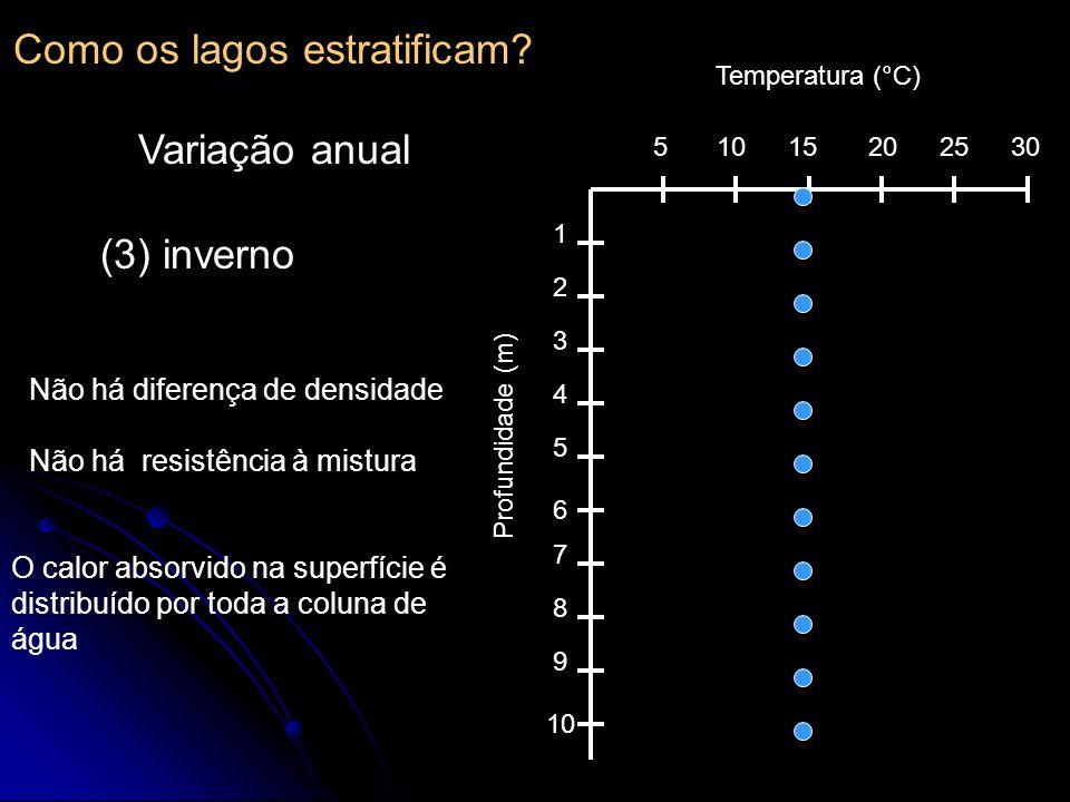 Como os lagos estratificam? Variação anual 510152025 30 1 2 3 4 5 6 7 8 9 10 Temperatura (°C) Profundidade (m) (3) inverno Não há diferença de densida