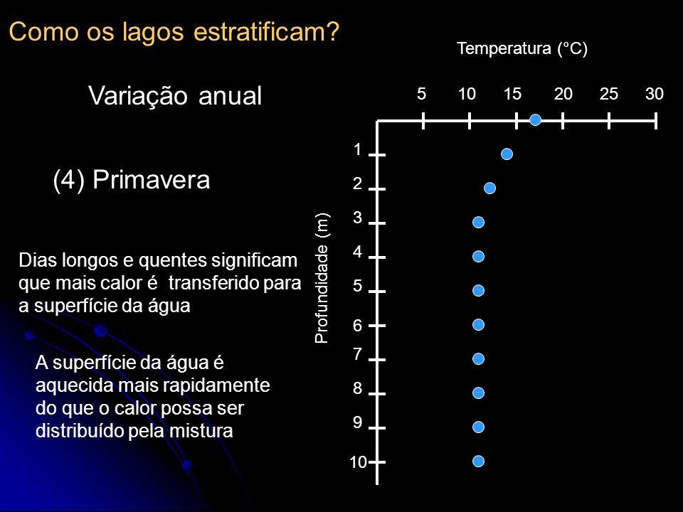 510152025 30 1 2 3 4 5 6 7 8 9 10 Temperatura (°C) Profundidade (m) (4) Primavera Dias longos e quentes significam que mais calor é transferido para a