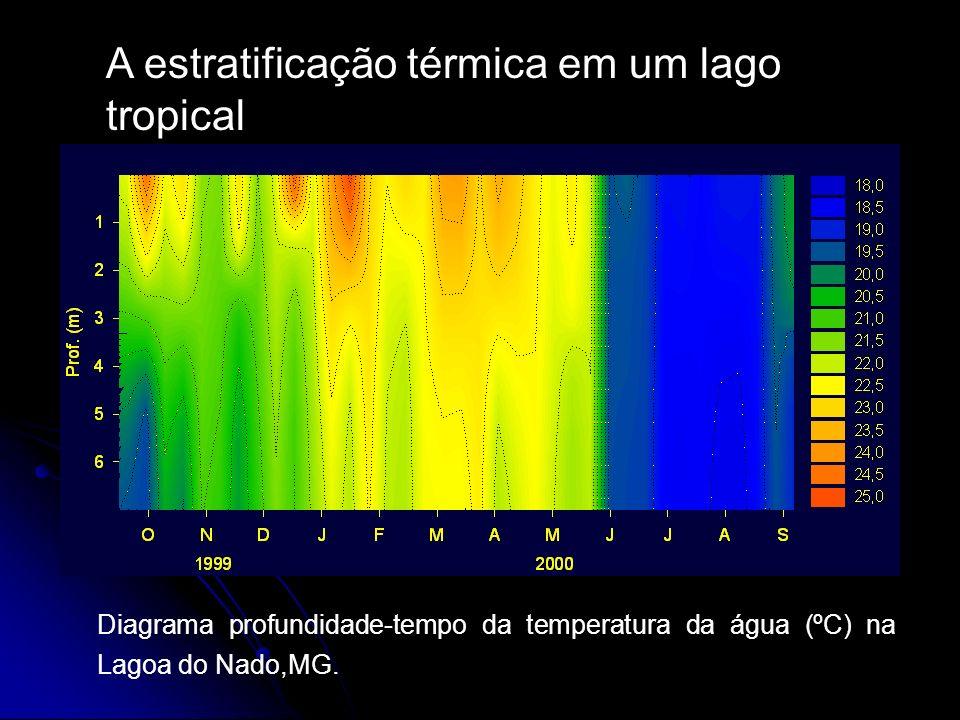 A estratificação térmica em um lago tropical Diagrama profundidade-tempo da temperatura da água (ºC) na Lagoa do Nado,MG.