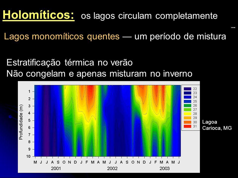 Lagos monomíticos quentes um período de mistura Estratificação térmica no verão Não congelam e apenas misturam no inverno Kalff 2002 Holomíticos: os l