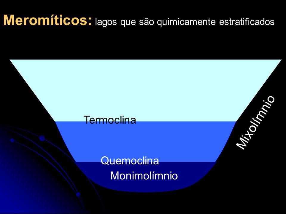 Meromíticos: lagos que são quimicamente estratificados Monimolímnio Mixolímnio Termoclina Quemoclina