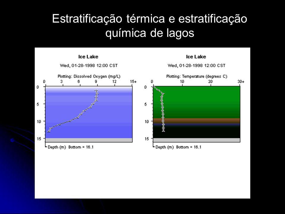 Estratificação térmica e estratificação química de lagos