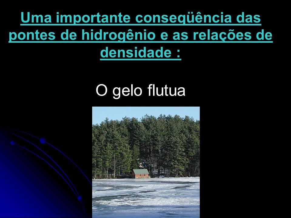 Uma importante conseqüência das pontes de hidrogênio e as relações de densidade : O gelo flutua
