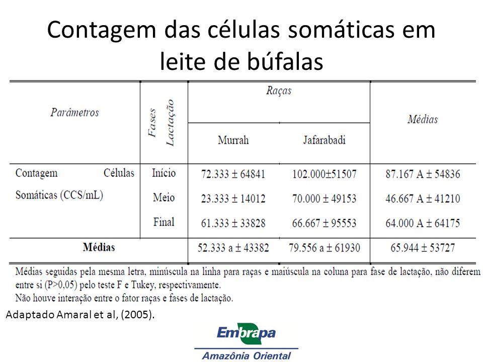 Adaptado Amaral et al, (2005). Contagem das células somáticas em leite de búfalas