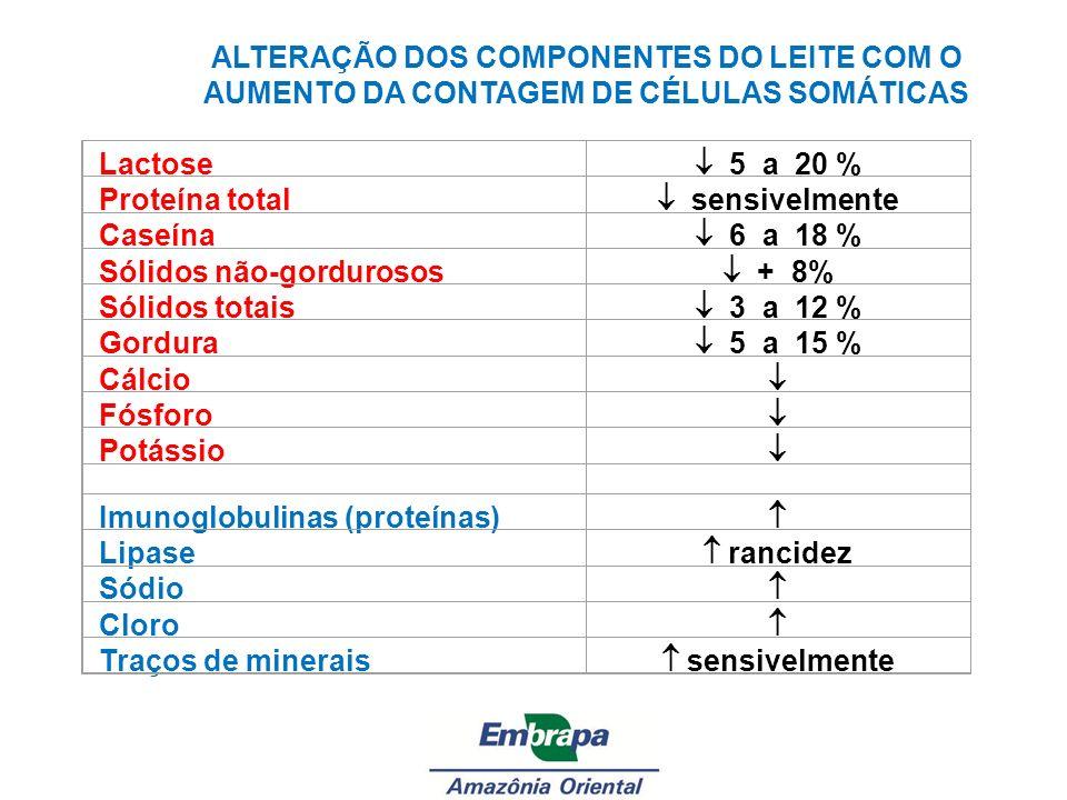 Lactose 5 a 20 % Proteína total sensivelmente Caseína 6 a 18 % Sólidos não-gordurosos + 8% Sólidos totais 3 a 12 % Gordura 5 a 15 % Cálcio Fósforo Pot