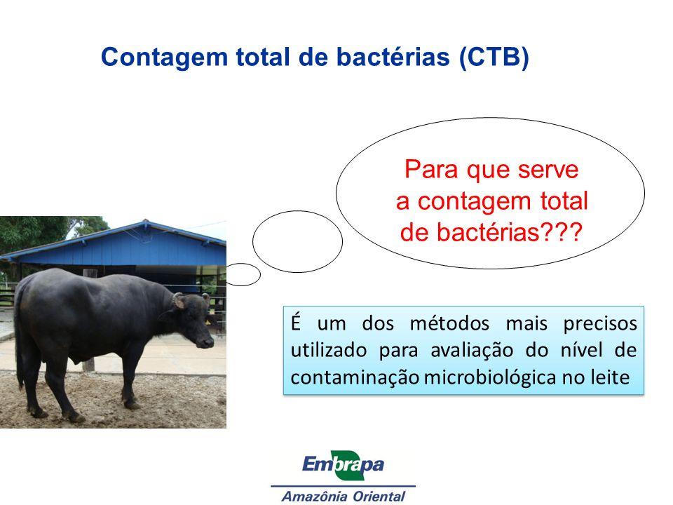 Contagem total de bactérias (CTB) Para que serve a contagem total de bactérias??? É um dos métodos mais precisos utilizado para avaliação do nível de