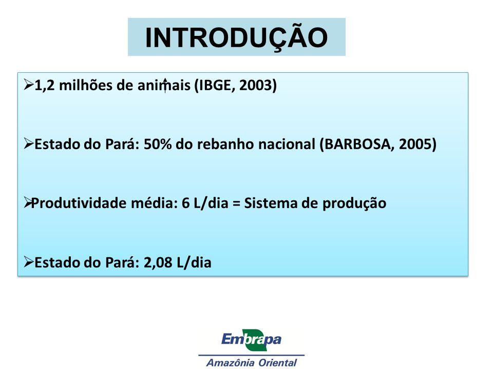 INTRODUÇÃO 1,2 milhões de animais (IBGE, 2003) Estado do Pará: 50% do rebanho nacional (BARBOSA, 2005) Produtividade média: 6 L/dia = Sistema de produ