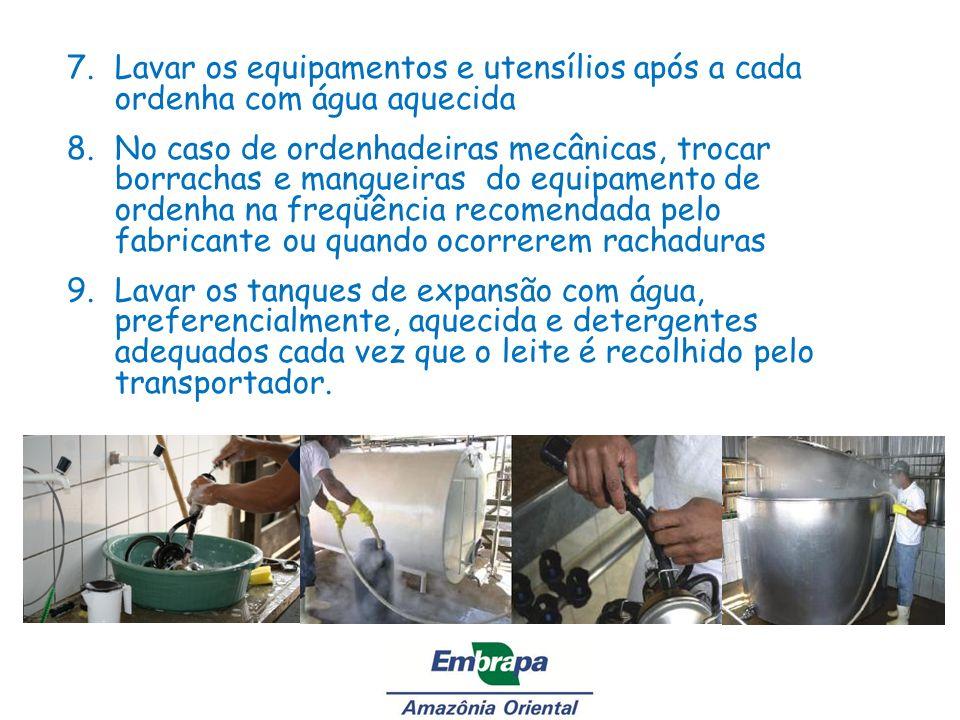 7.Lavar os equipamentos e utensílios após a cada ordenha com água aquecida 8.No caso de ordenhadeiras mecânicas, trocar borrachas e mangueiras do equi