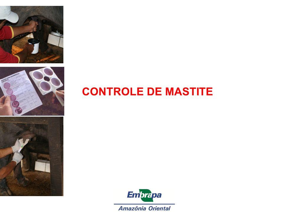 CONTROLE DE MASTITE