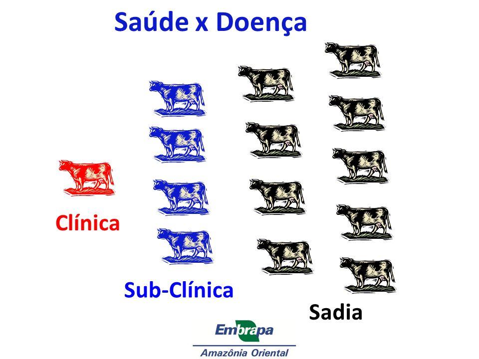 Clínica Sub-Clínica Sadia Saúde x Doença
