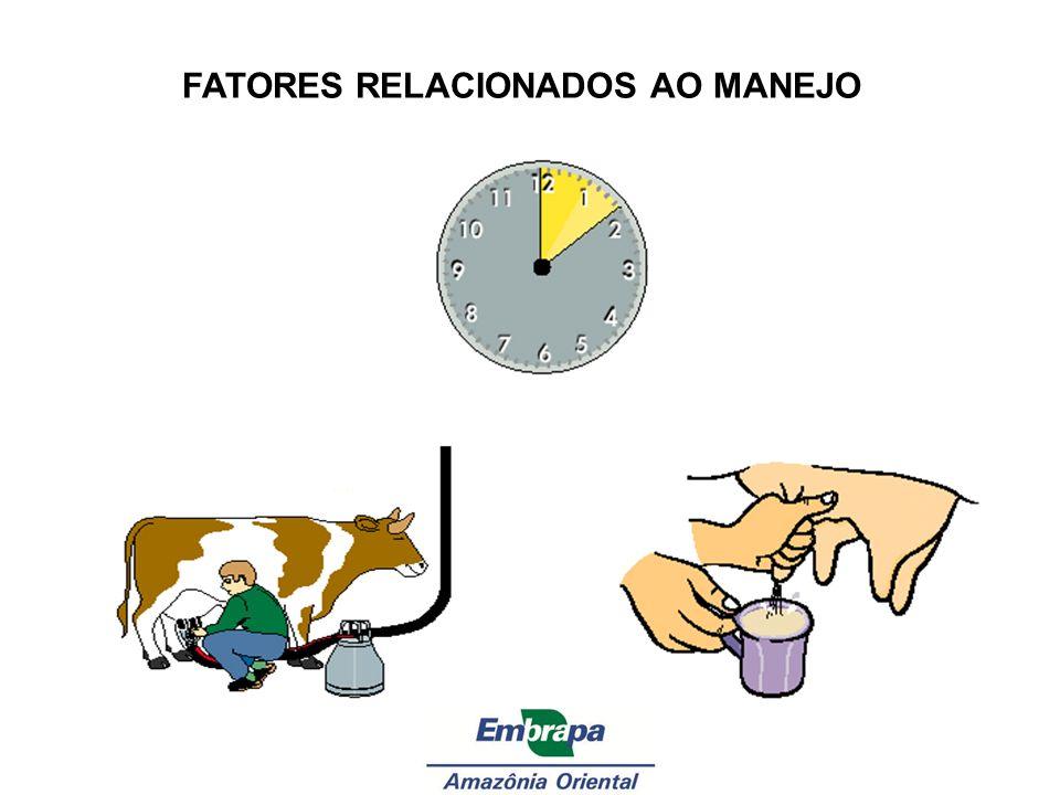 FATORES RELACIONADOS AO MANEJO
