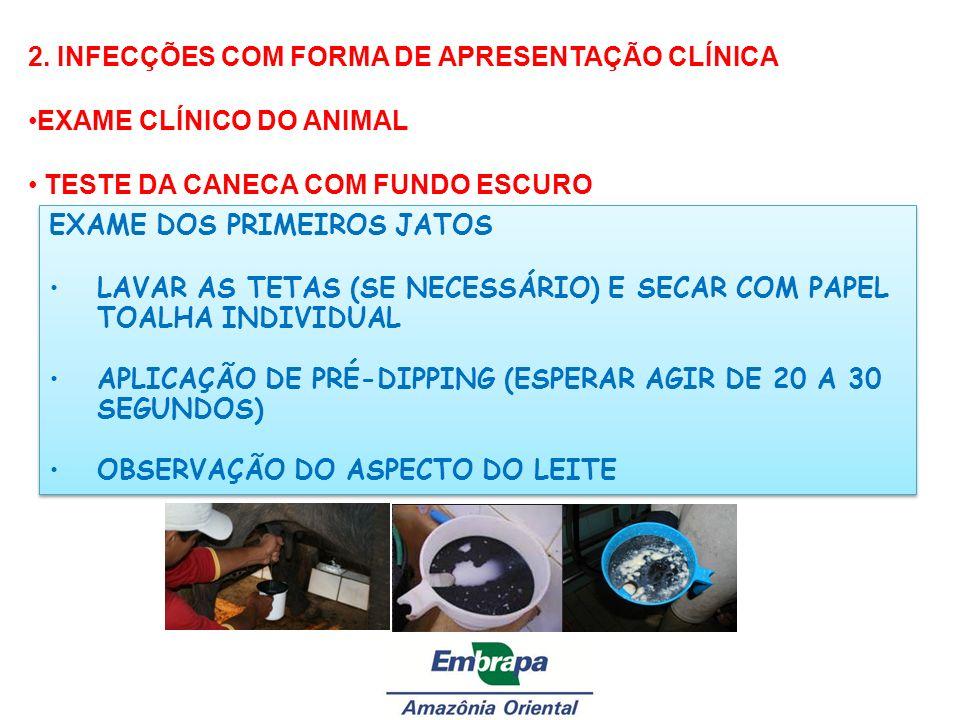 2. INFECÇÕES COM FORMA DE APRESENTAÇÃO CLÍNICA EXAME CLÍNICO DO ANIMAL TESTE DA CANECA COM FUNDO ESCURO EXAME DOS PRIMEIROS JATOS LAVAR AS TETAS (SE N