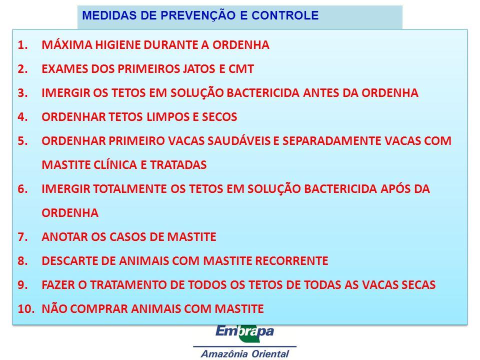 MEDIDAS DE PREVENÇÃO E CONTROLE 1.MÁXIMA HIGIENE DURANTE A ORDENHA 2.EXAMES DOS PRIMEIROS JATOS E CMT 3.IMERGIR OS TETOS EM SOLUÇÃO BACTERICIDA ANTES