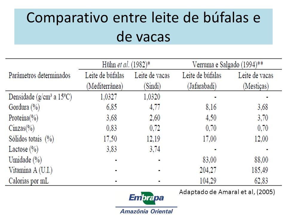Importância Econômica da Bubalinocultura de Leite Procura = Mercado consumidor (SILVA et al., 2003) $ = 50% do leite de vaca bovina (BASTIANETTO, 2005) Rendimento industrial 40 % maior (SILVA et al., 2003) Características nutricionais favoráveis Procura = Mercado consumidor (SILVA et al., 2003) $ = 50% do leite de vaca bovina (BASTIANETTO, 2005) Rendimento industrial 40 % maior (SILVA et al., 2003) Características nutricionais favoráveis Adaptado de Silva et al.