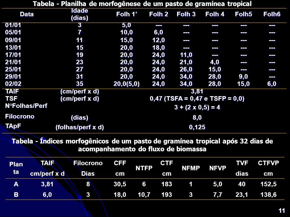 11 Tabela - Planilha de morfogênese de um pasto de gramínea tropical Data Idade Folh 1 Folh 2 Folh 3 Folh 4 Folh5Folh6 (dias) 01/0135,0---------------