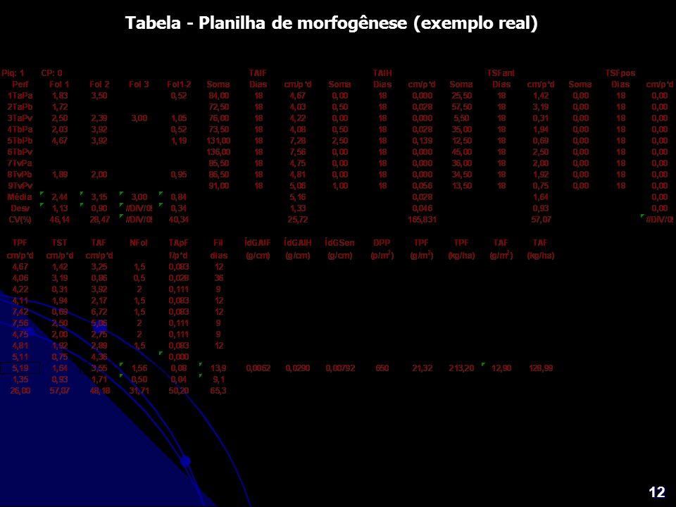 12 Tabela - Planilha de morfogênese (exemplo real)