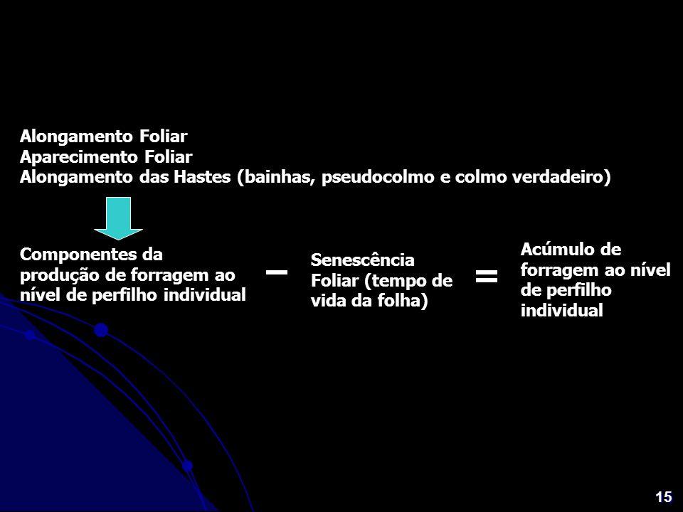 15 Alongamento Foliar Aparecimento Foliar Alongamento das Hastes (bainhas, pseudocolmo e colmo verdadeiro) Componentes da produção de forragem ao níve