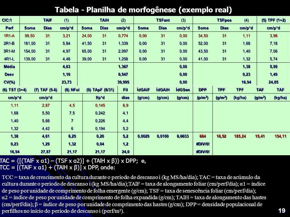 19 Tabela - Planilha de morfogênese (exemplo real) TAC = {[(TAlF x α1) – (TSF x α2)] + (TAlH x β)} x DPP; e, TCC = [(TAlF x α1) + (TAlH x β)] x DPP, o