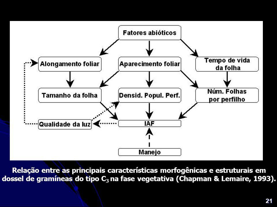 21 Relação entre as principais características morfogênicas e estruturais em dossel de gramíneas do tipo C 3 na fase vegetativa (Chapman & Lemaire, 19