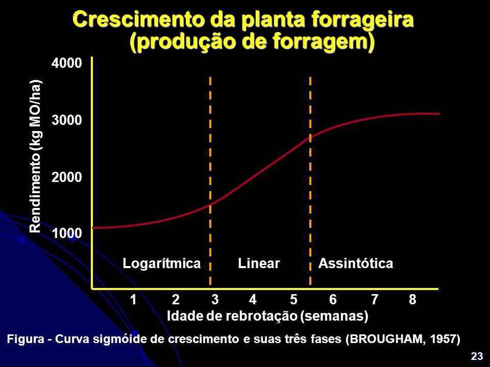 23 Crescimento da planta forrageira (produção de forragem) 4000 3000 2000 1000 12345678 Idade de rebrotação (semanas) Rendimento (kg MO/ha) Figura - C
