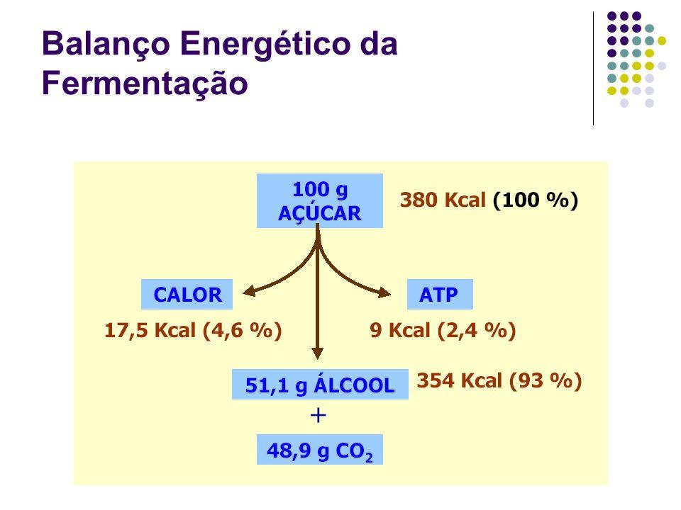 Balanço Energético da Fermentação