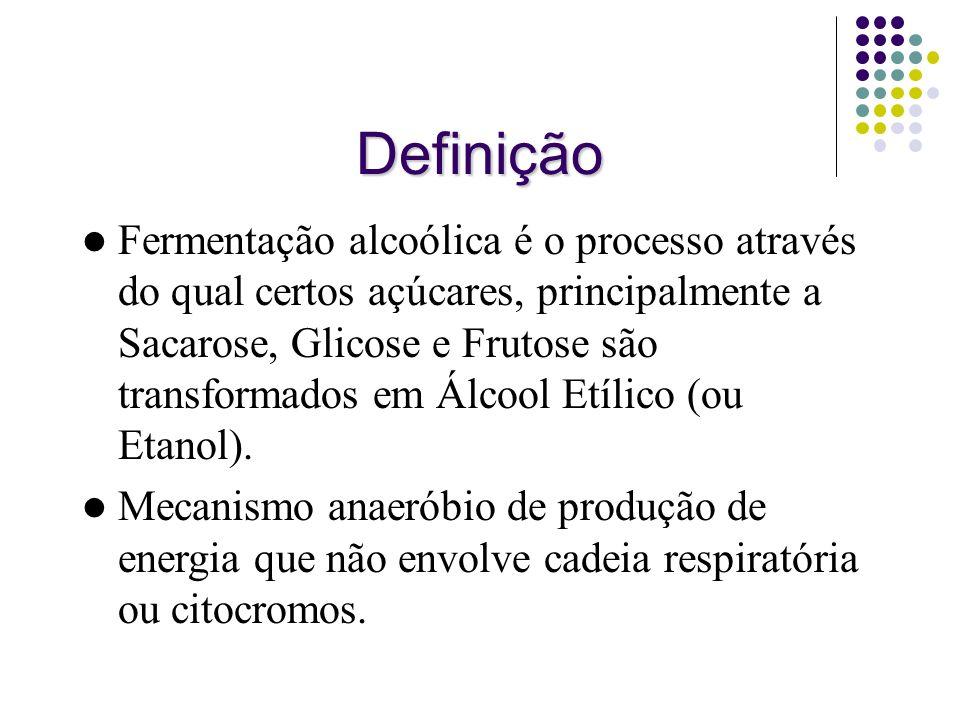 Definição Fermentação alcoólica é o processo através do qual certos açúcares, principalmente a Sacarose, Glicose e Frutose são transformados em Álcool