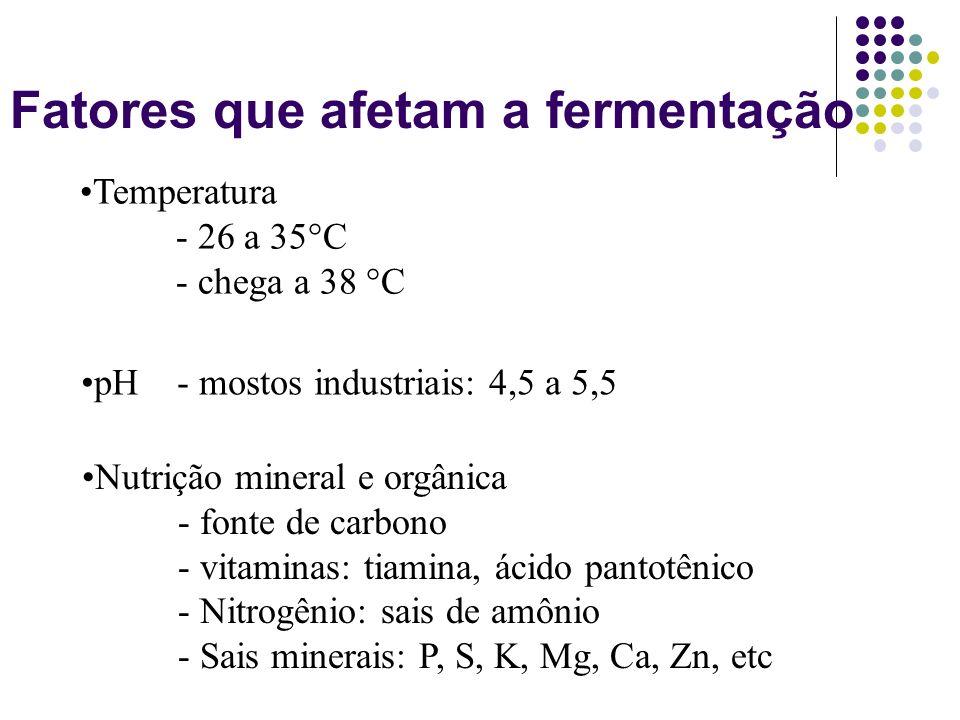 Fatores que afetam a fermentação Nutrição mineral e orgânica - fonte de carbono - vitaminas: tiamina, ácido pantotênico - Nitrogênio: sais de amônio -