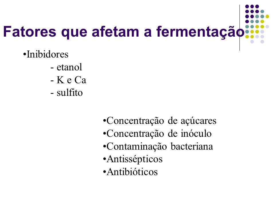 Fatores que afetam a fermentação Inibidores - etanol - K e Ca - sulfito Concentração de açúcares Concentração de inóculo Contaminação bacteriana Antis