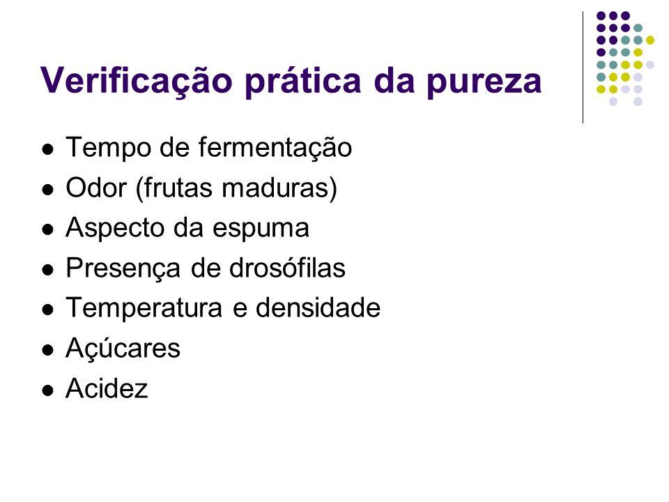 Verificação prática da pureza Tempo de fermentação Odor (frutas maduras) Aspecto da espuma Presença de drosófilas Temperatura e densidade Açúcares Aci