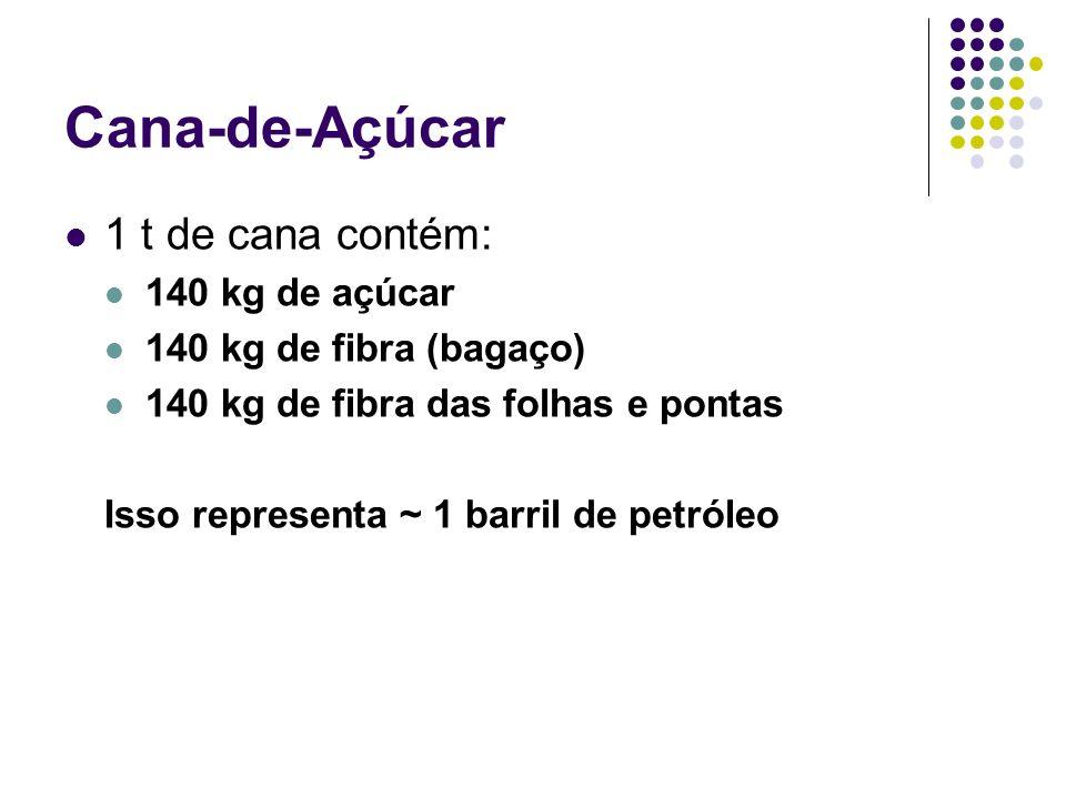 Cana-de-Açúcar 1 t de cana contém: 140 kg de açúcar 140 kg de fibra (bagaço) 140 kg de fibra das folhas e pontas Isso representa ~ 1 barril de petróle
