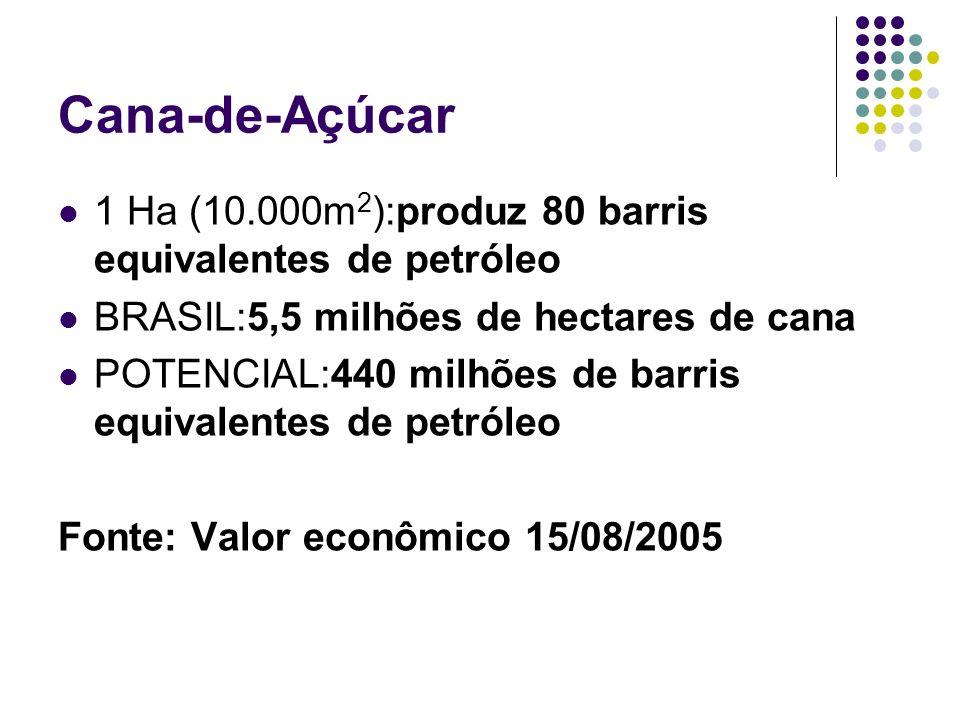 Cana-de-Açúcar 1 Ha (10.000m 2 ):produz 80 barris equivalentes de petróleo BRASIL:5,5 milhões de hectares de cana POTENCIAL:440 milhões de barris equi