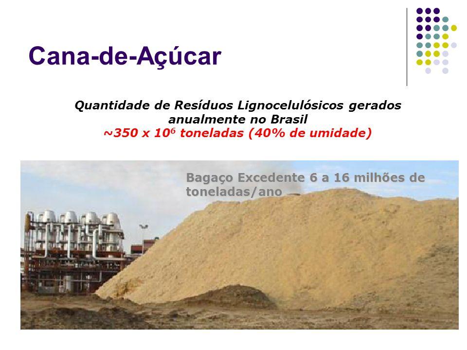 Bagaço Excedente 6 a 16 milhões de toneladas/ano Quantidade de Resíduos Lignocelulósicos gerados anualmente no Brasil ~350 x 10 6 toneladas (40% de um
