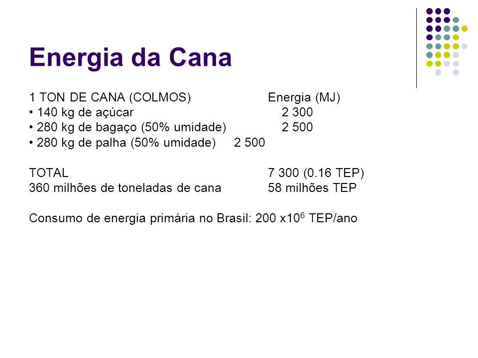 Energia da Cana 1 TON DE CANA (COLMOS) Energia (MJ) 140 kg de açúcar 2 300 280 kg de bagaço (50% umidade) 2 500 280 kg de palha (50% umidade) 2 500 TO