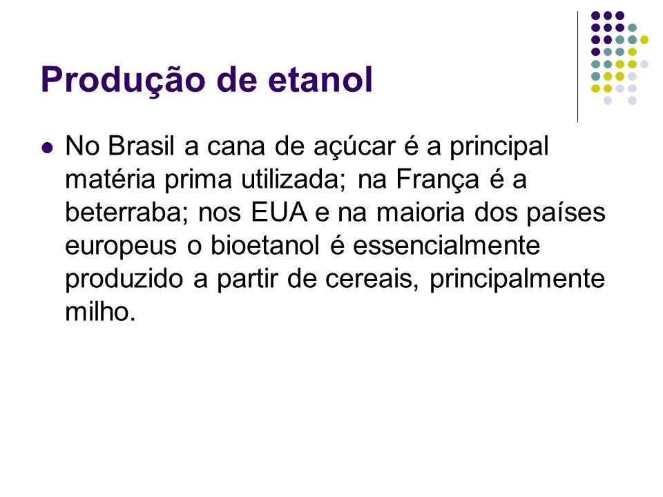 Produção de etanol No Brasil a cana de açúcar é a principal matéria prima utilizada; na França é a beterraba; nos EUA e na maioria dos países europeus