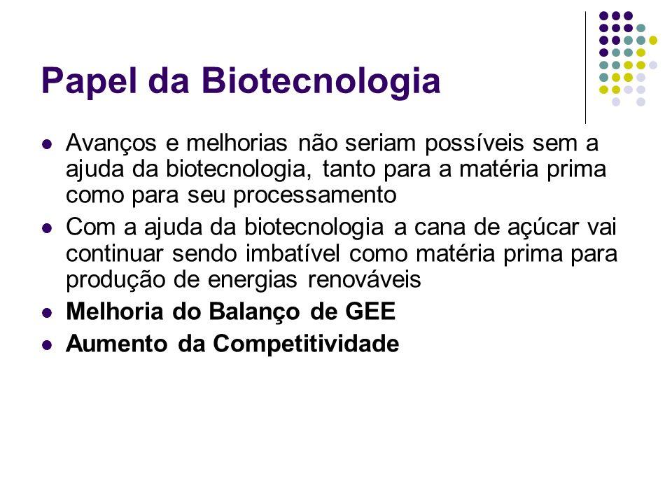 Papel da Biotecnologia Avanços e melhorias não seriam possíveis sem a ajuda da biotecnologia, tanto para a matéria prima como para seu processamento C