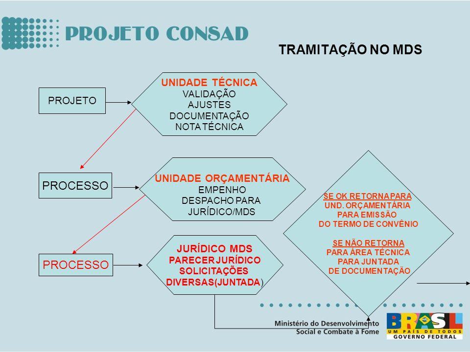 PROJETO PROCESSO UNIDADE TÉCNICA VALIDAÇÃO AJUSTES DOCUMENTAÇÃO NOTA TÉCNICA UNIDADE ORÇAMENTÁRIA EMPENHO DESPACHO PARA JURÍDICO/MDS JURÍDICO MDS PARE